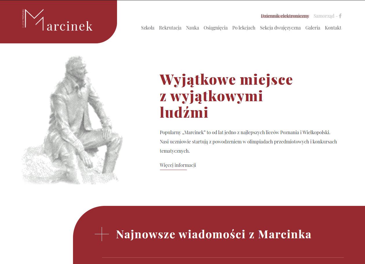 Serwis internetowy + logotyp - Marcinek 1